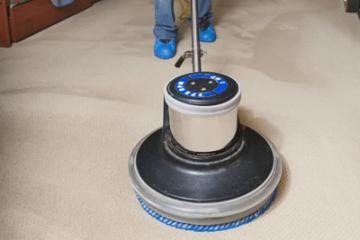 ניקיון שטיחים / ריפודים